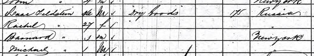 First Feldsteins, 1860 US Federal Census, New York City