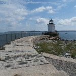 The Bug Light
